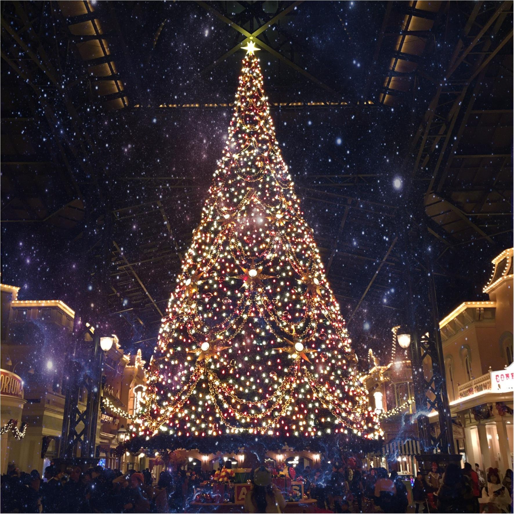 大切な人と一緒に♡《 ディズニークリスマス2017 》 クリスマスの