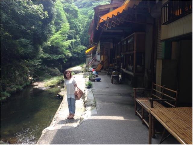 【徳島の郷土料理】大自然に囲まれながら食べる「たらいうどん」おすすめです!!_6
