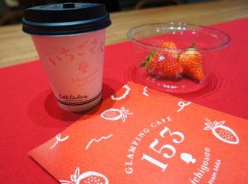 《5日間限定open❤️》話題の【南青山】GLAMPING CAFÉ 153 From SAGAに行ってきました✌︎❤︎