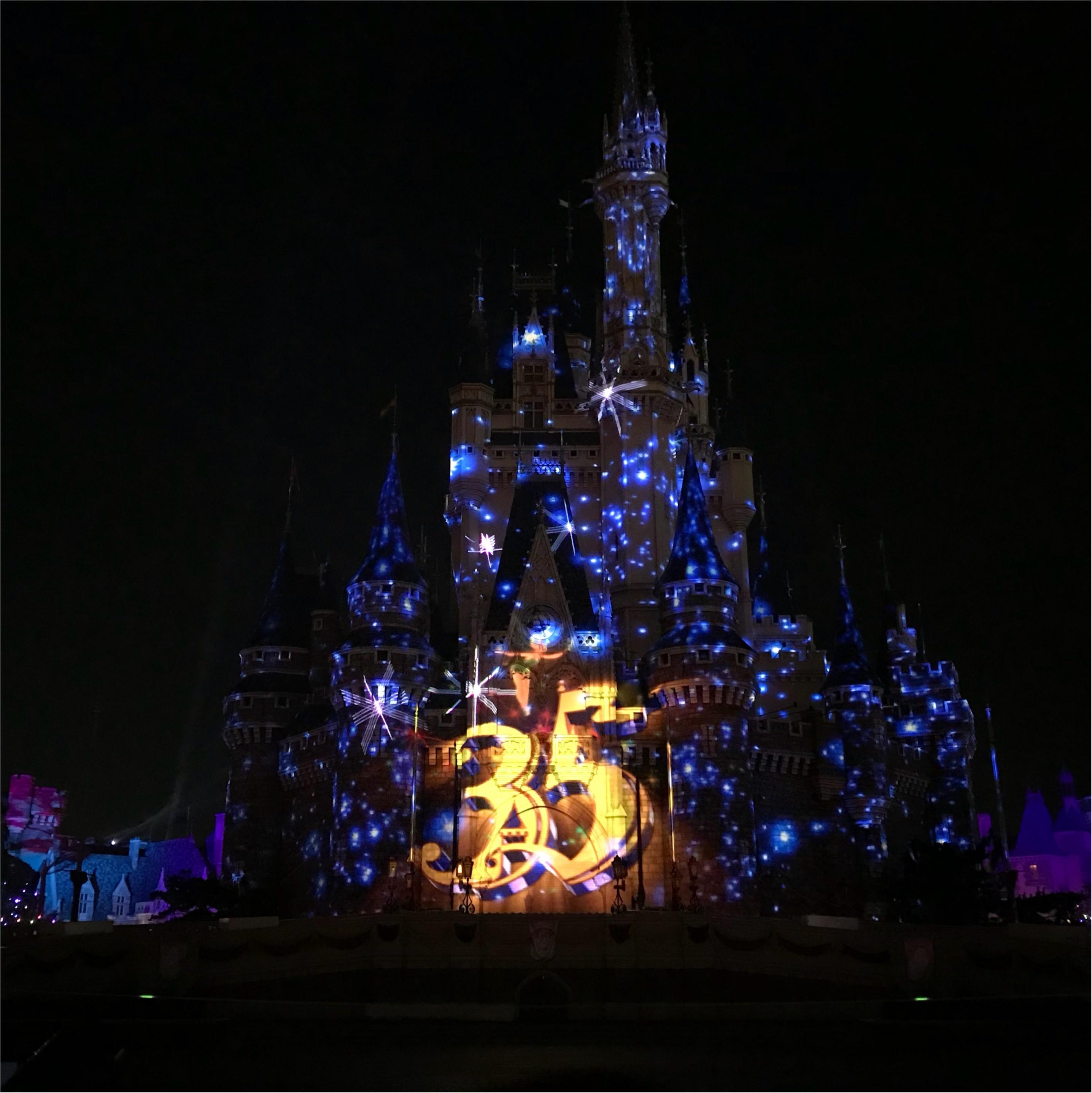 【Celebrate!Tokyo Disneyland】に当選したら絶対に知っておくべきポイントとは❤︎_8