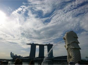 ≪海外旅行/シンガポール/宿泊編≫一度は泊まってみたいあの屋上プール付きホテル!