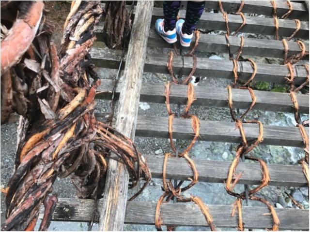 【一度は行きたい日本の絶景】徳島・祖谷のかずら橋_5