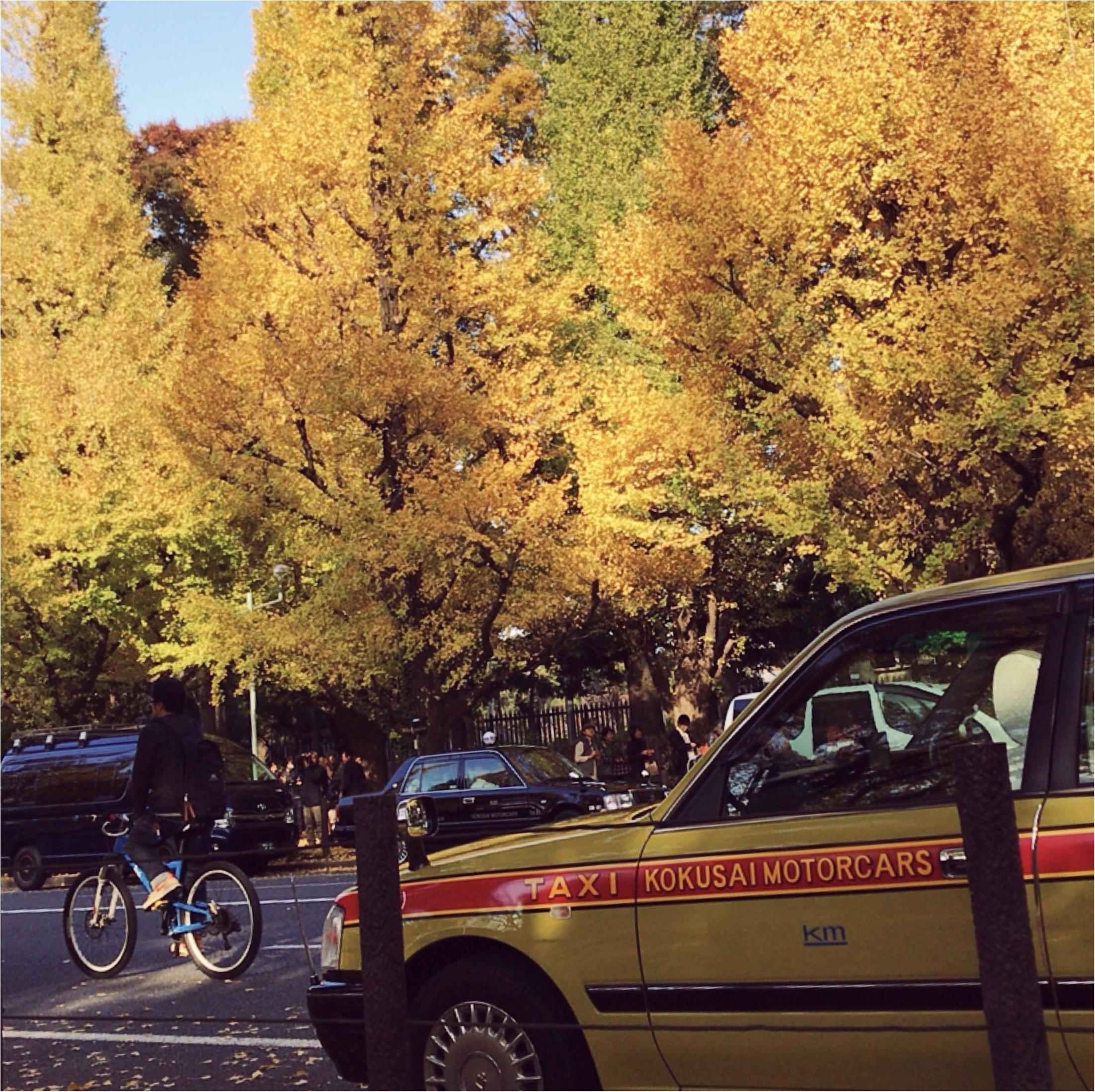 【フォトジェニックスポット】今日からいちょう祭り!神宮外苑いちょう並木が色づき始めました!今年の見頃は11月〇〇~!!_2