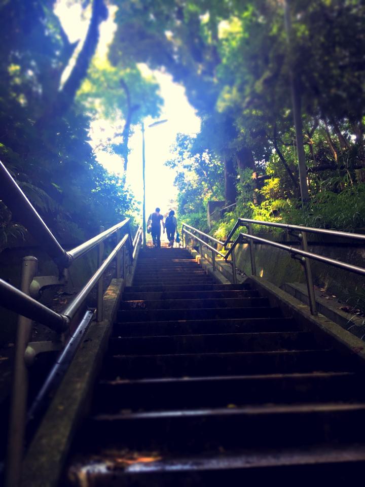 【癒しスポット】東京のオアシス。仕事に疲れたときは森林浴でリフレッシュ!_13