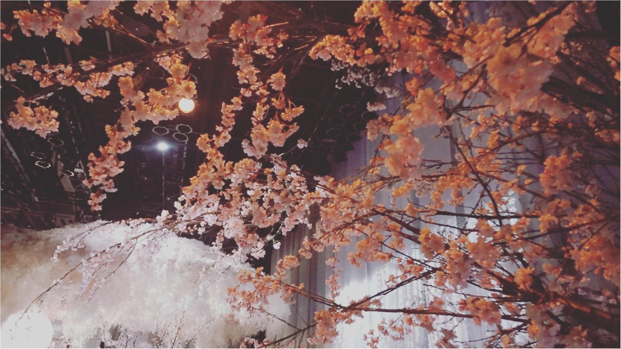今年も開催中!通算15万人動員の日本一早いお花見イベント「 FLOWERS by NAKED 2017 ー立春ー」@日本橋≪samenyan≫_8