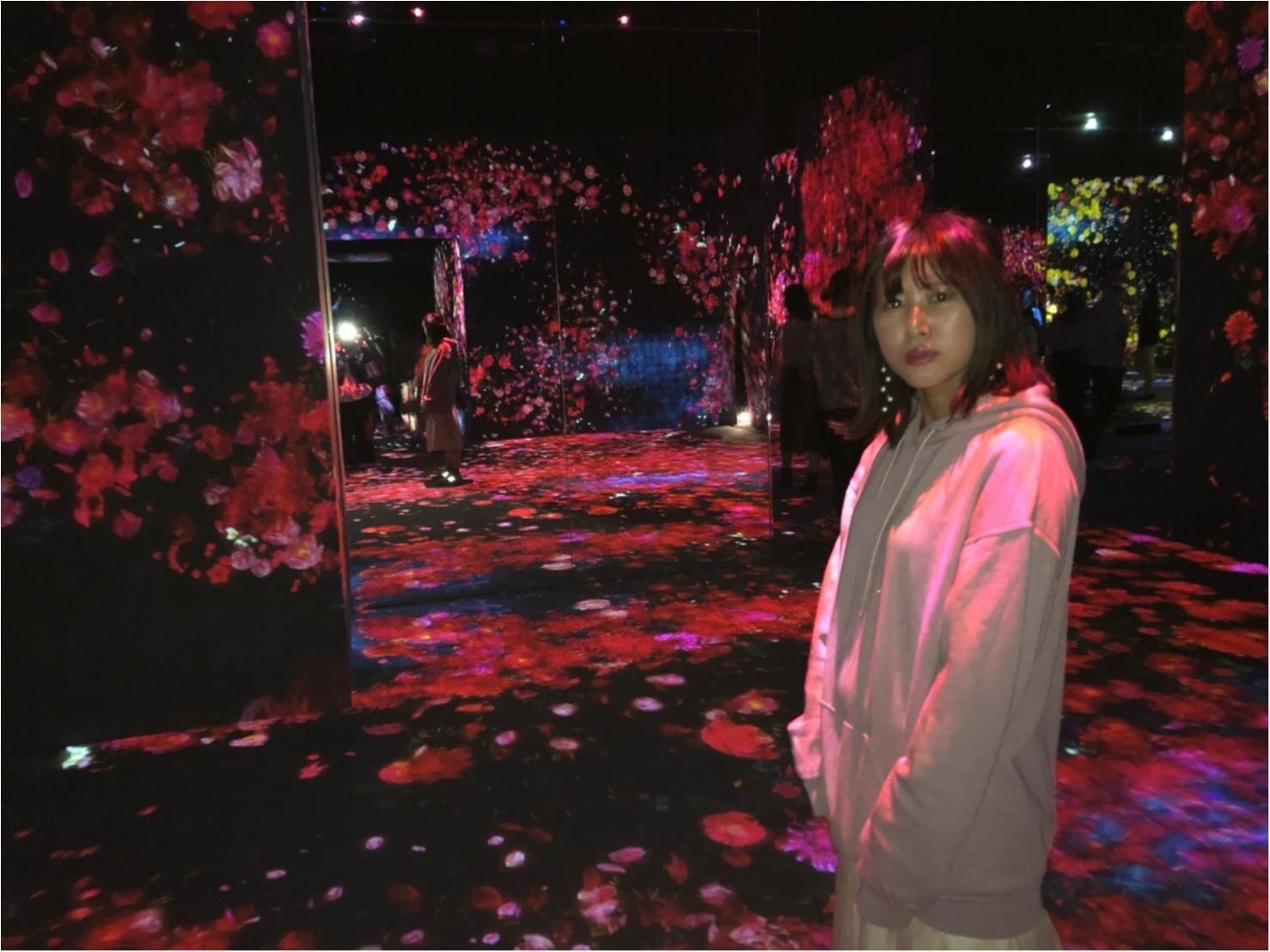 【チームラボ】お台場で開催中『ボーダレス』ランプの森が幻想的すぎる!_11