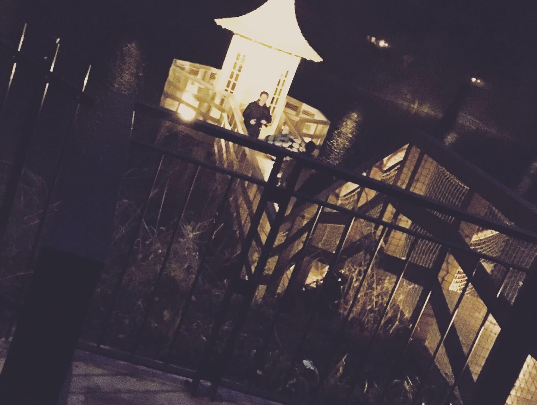 埼玉女子旅特集《2019年版》- 話題の「ムーミンバレーパーク」やパワースポット、おすすめグルメまとめ_9