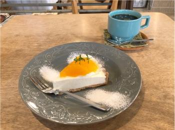 広島で行きたいカフェ♡ 美味しい洋菓子とかわいい雑貨のお店 《 ケツァール 》さんの爽やかオレンジタルト♡♡
