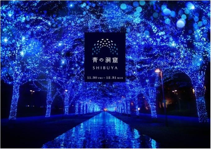 東京都内のおすすめイルミネーション、表参道、恵比寿、お台場etc.11選☆彡_8