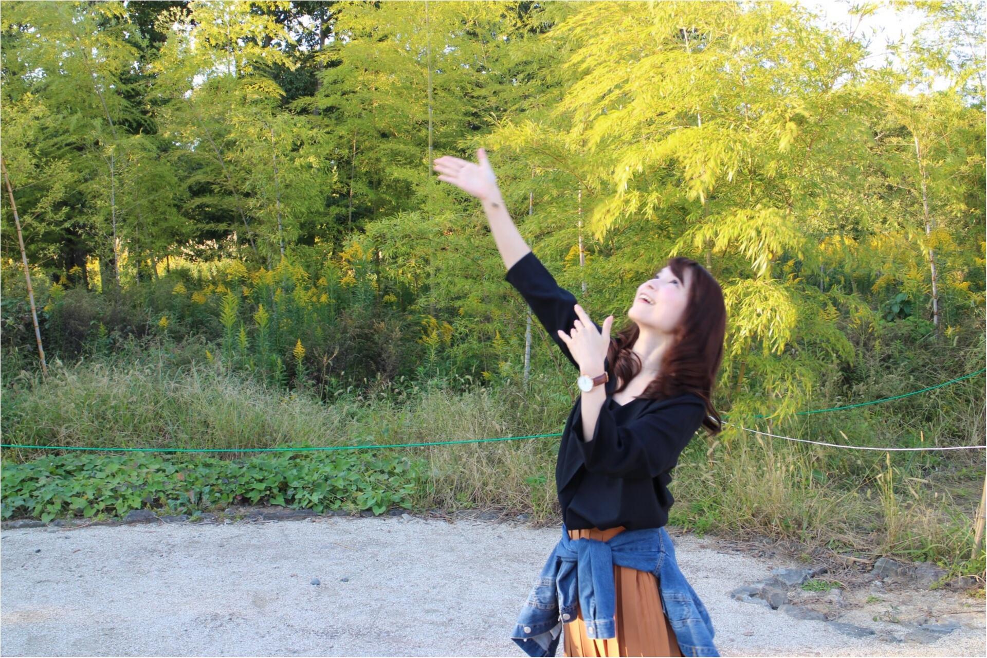 ♡ドライブにオススメ!都内から2時間弱で秋を感じられる!ひたち海浜公園にコキアを見に行こう♡_6