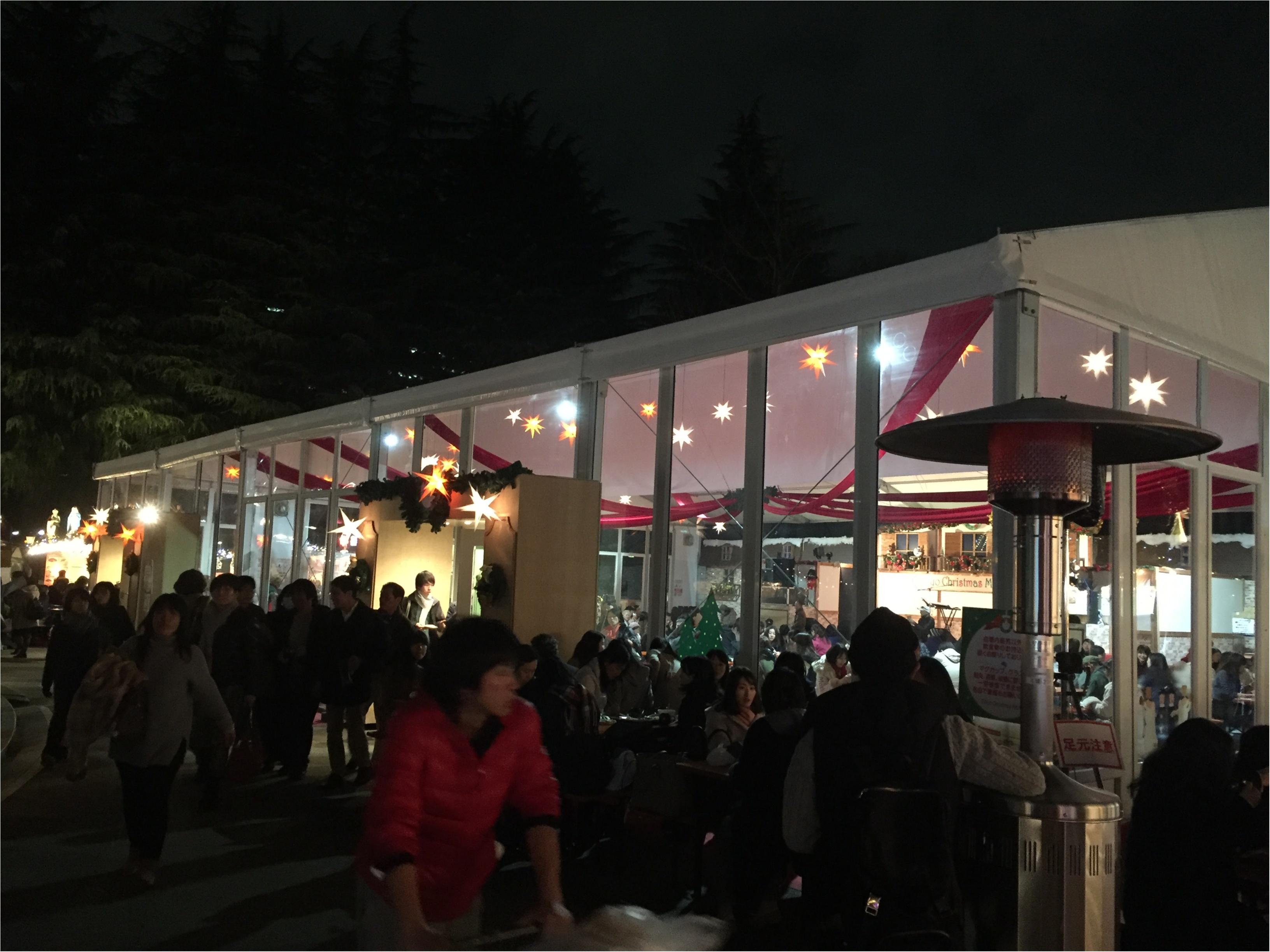 思わぬ素敵な出会いが✨✨日比谷公園【*東京クリスマスマーケット*】に行ってきました♪♪_12