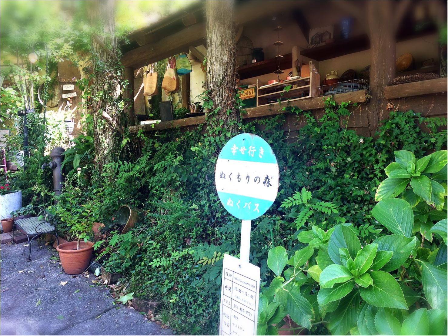 おとぎの国がココに。静岡に行ったら一度は行きたいかわいすぎる世界へ_16