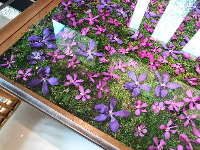 【NomuKobe】お花のテーブルで素敵なカフェを♡♡_4