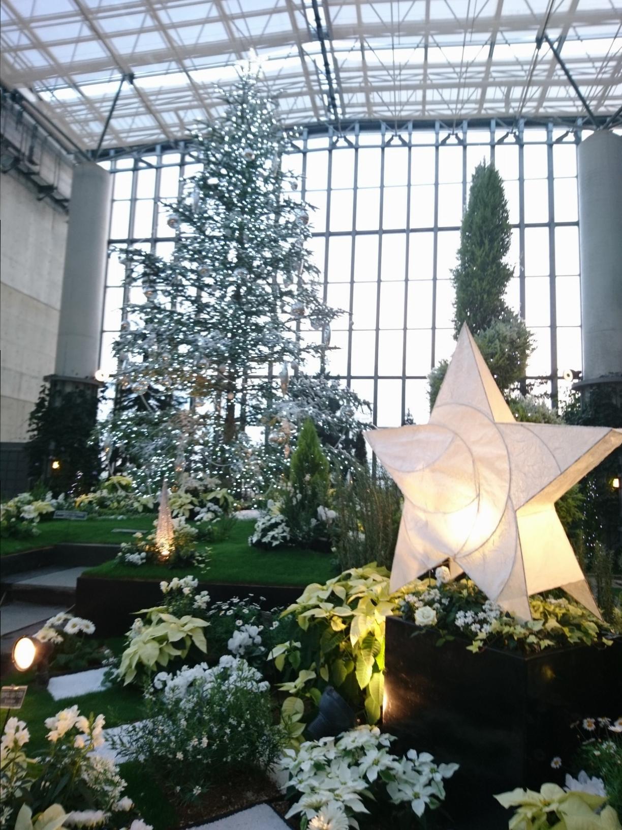 奇跡の星の植物館 淡路島 温室 植物園