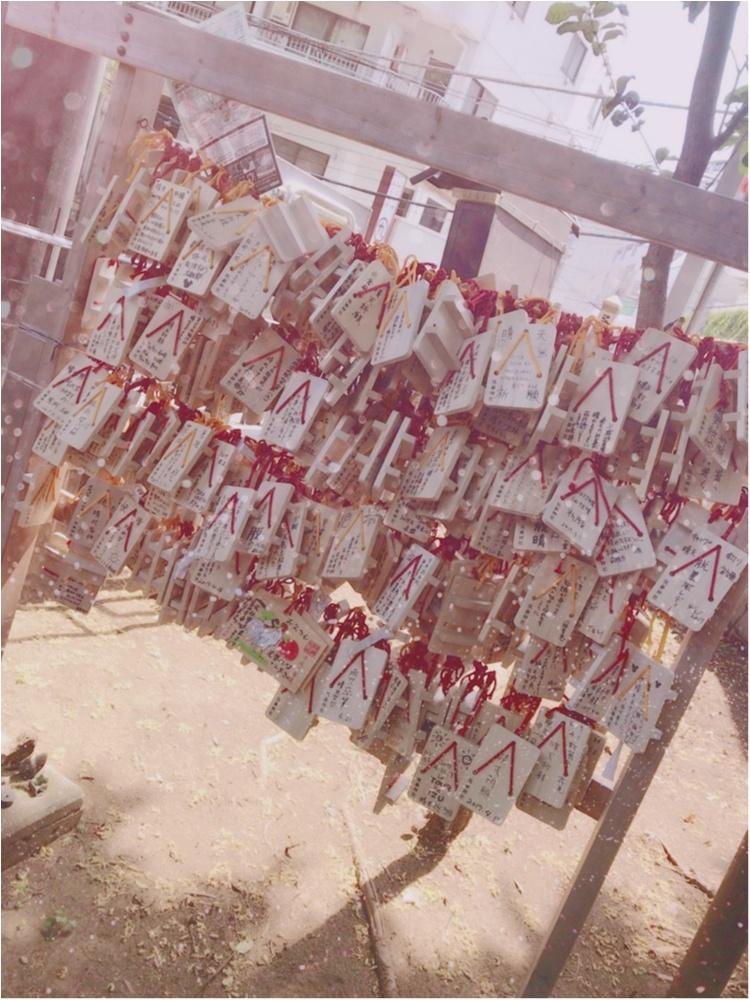 【プレ花嫁】全国で唯一♡お天気の神様がいる「氷川神社」で晴天祈願!@高円寺_3