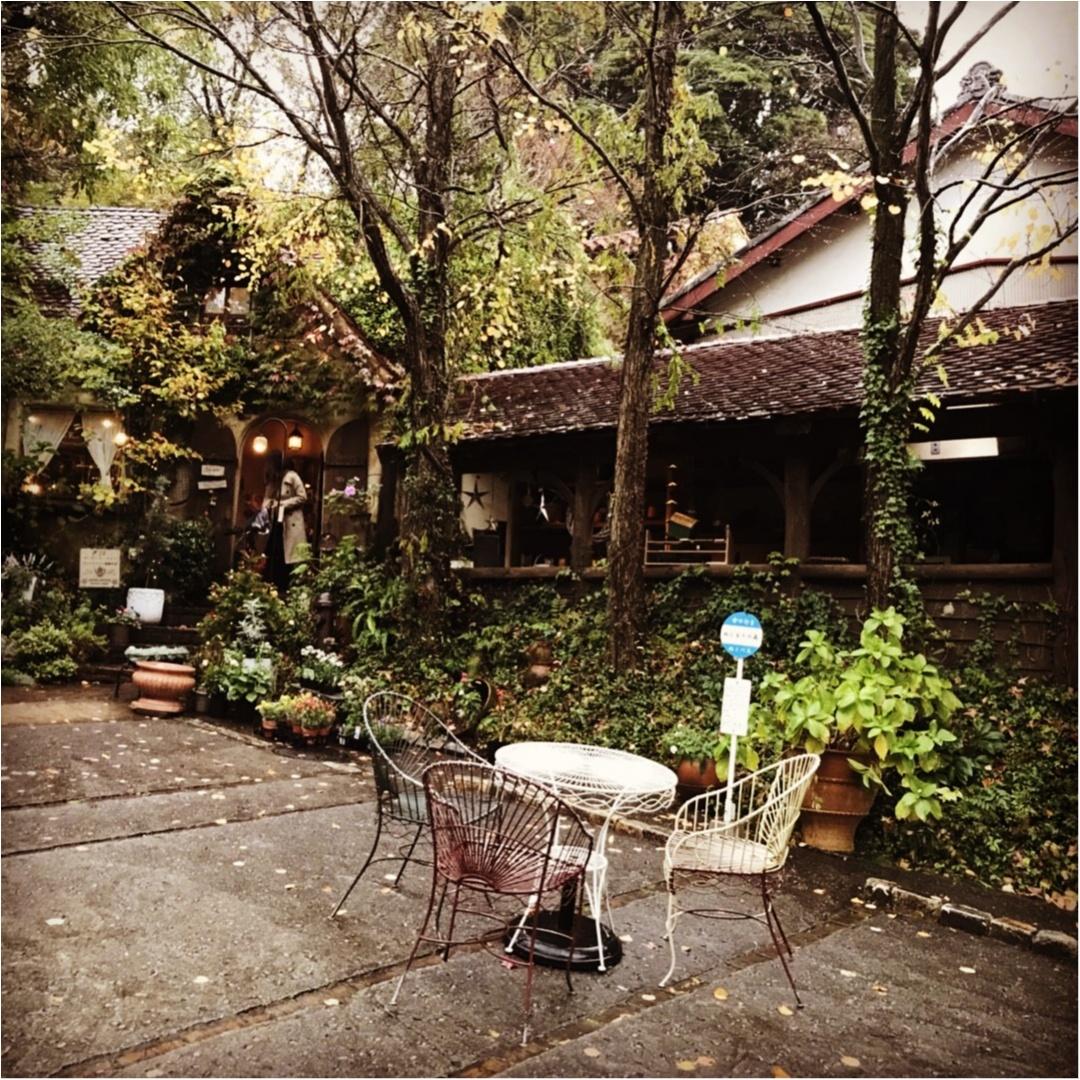 【カフェ巡り】まるでジブリの世界♡フォトジェニックな可愛いスポット『ぬくもりの森』 ~浜松おしゃれカフェ巡り①~_3