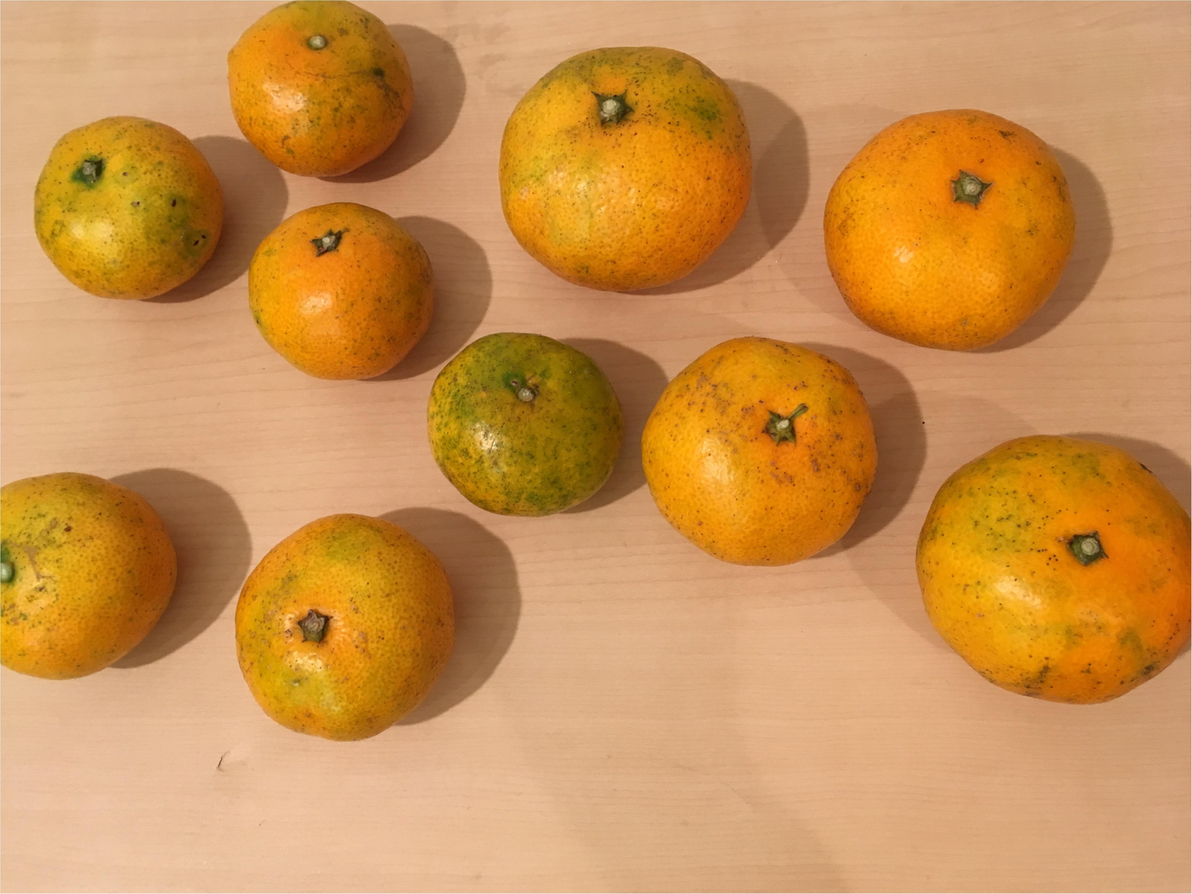 【料理▶レシピ有り】青山ファーマーズマーケットで見つけたフルーツで簡単ジャム作り☺_2