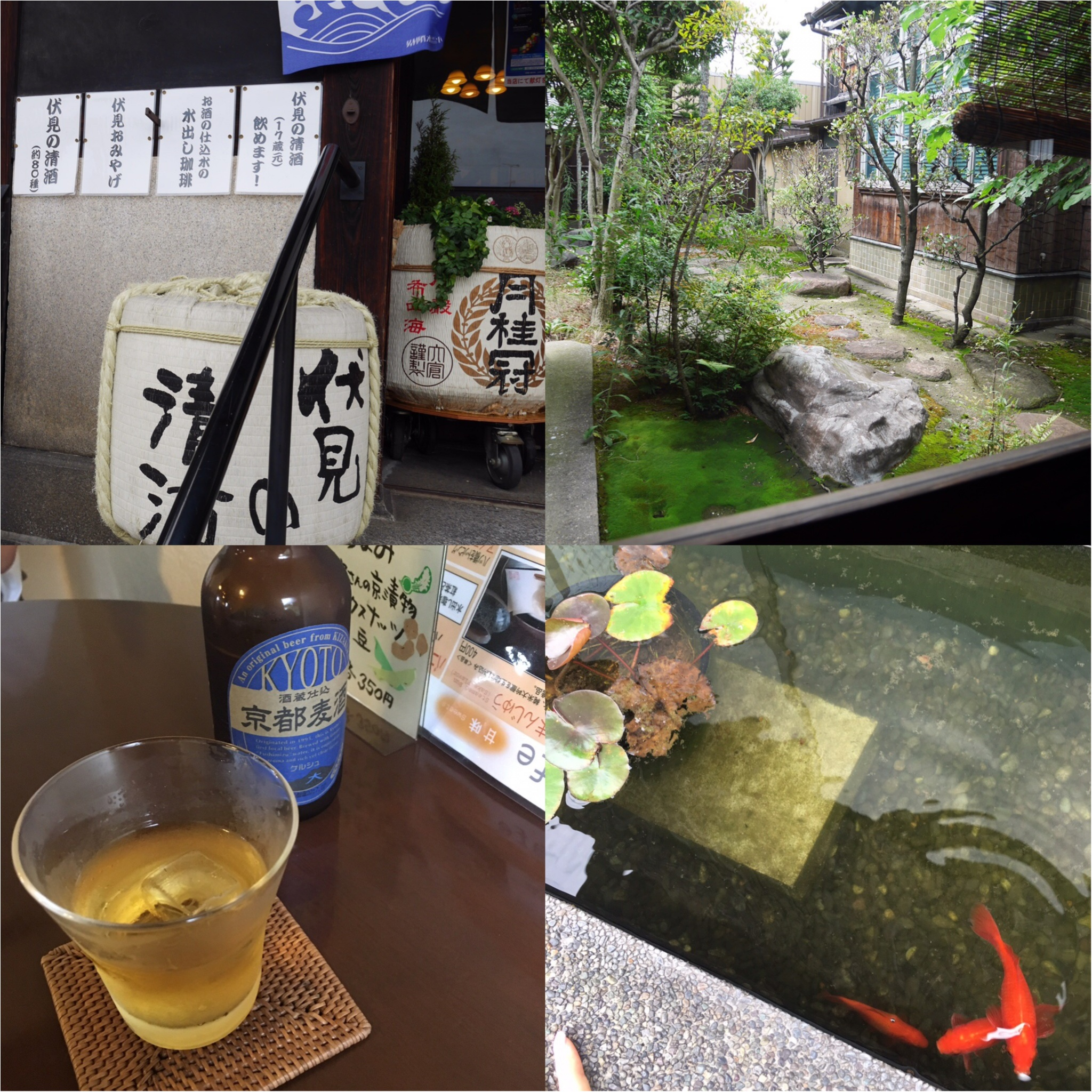 京都伏見 日本酒酒蔵めぐり _9