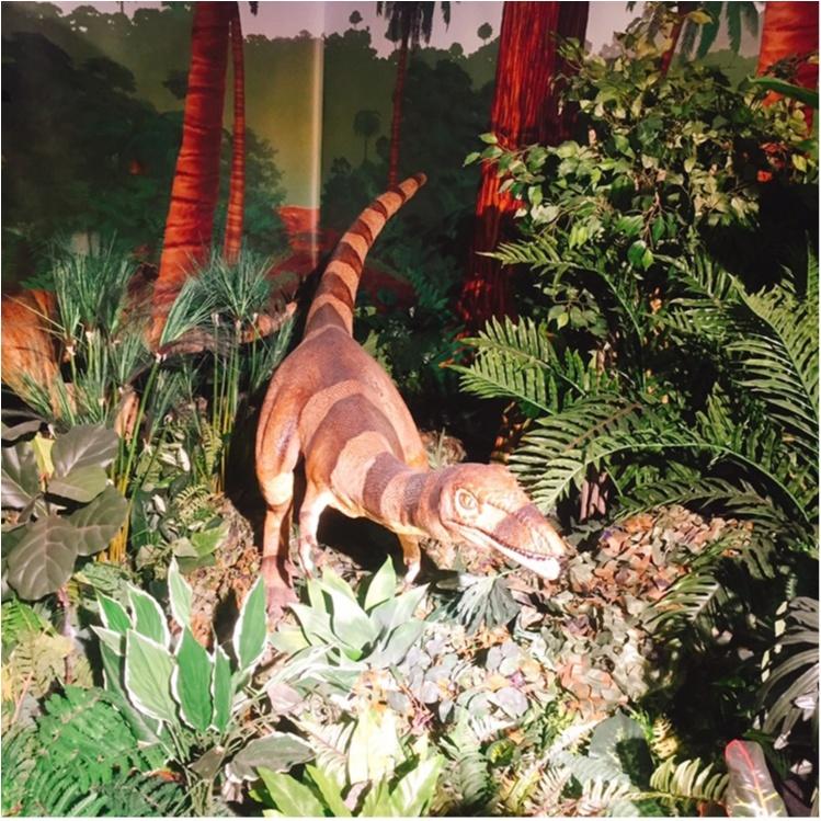 【9/3まで】大人も子供も楽しめる!!大迫力《横浜恐竜展2017》で動く恐竜の森を体験♪_10