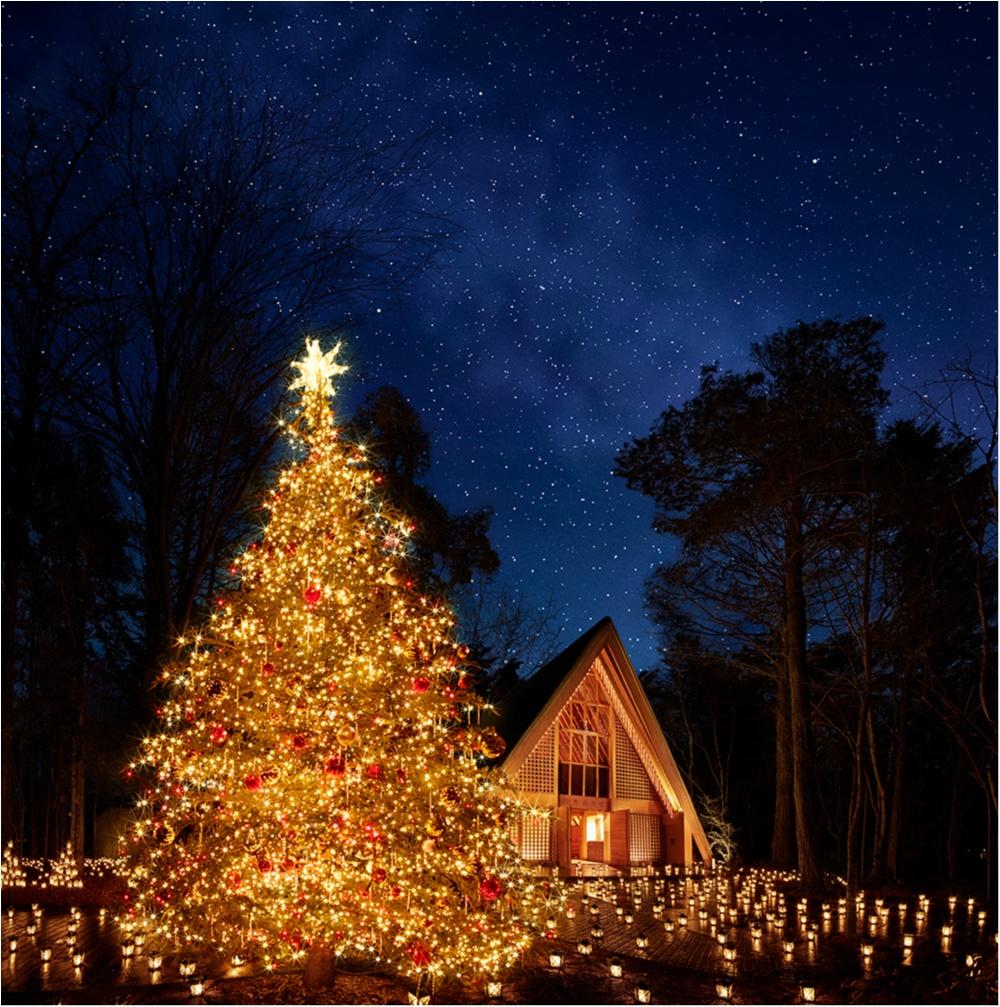 クリスマスは『星野リゾート 軽井沢ブレストンコート』でリッチなスイーツコースを食べてみない? 隣接の『軽井沢高原教会』ではキャンドルナイトも♡_2