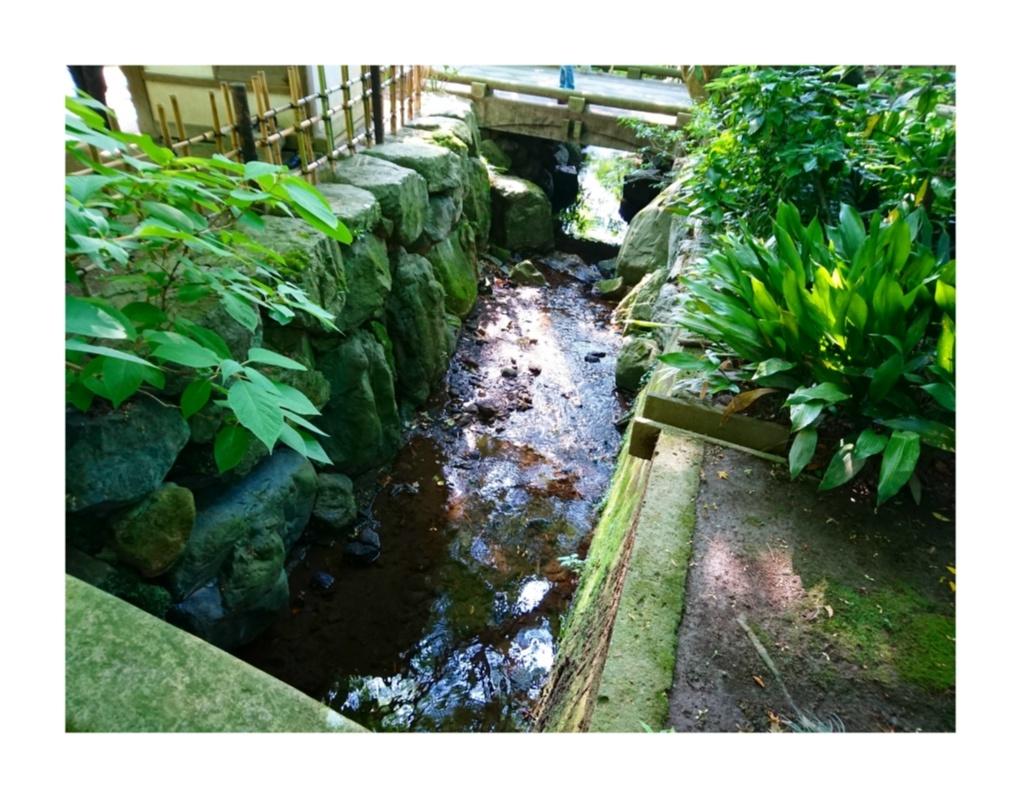 【散策】新緑が美しいこの季節は、鎌倉がおすすめ! ~ 紫陽花が見頃です ~  _5