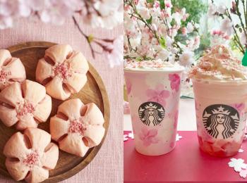 桜スイーツ特集《2019年版》- 限定グルメやスタバの新作、お花見グルメも!