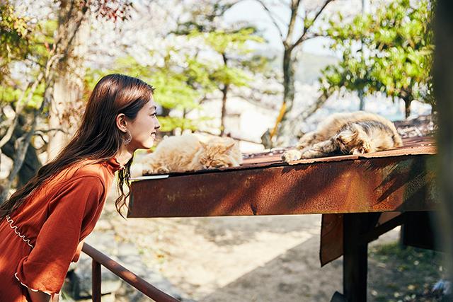 【広島女子旅】猫の尾道とうさぎの大久野島。可愛いおいしいインスタ映えな1 泊2日旅行_8