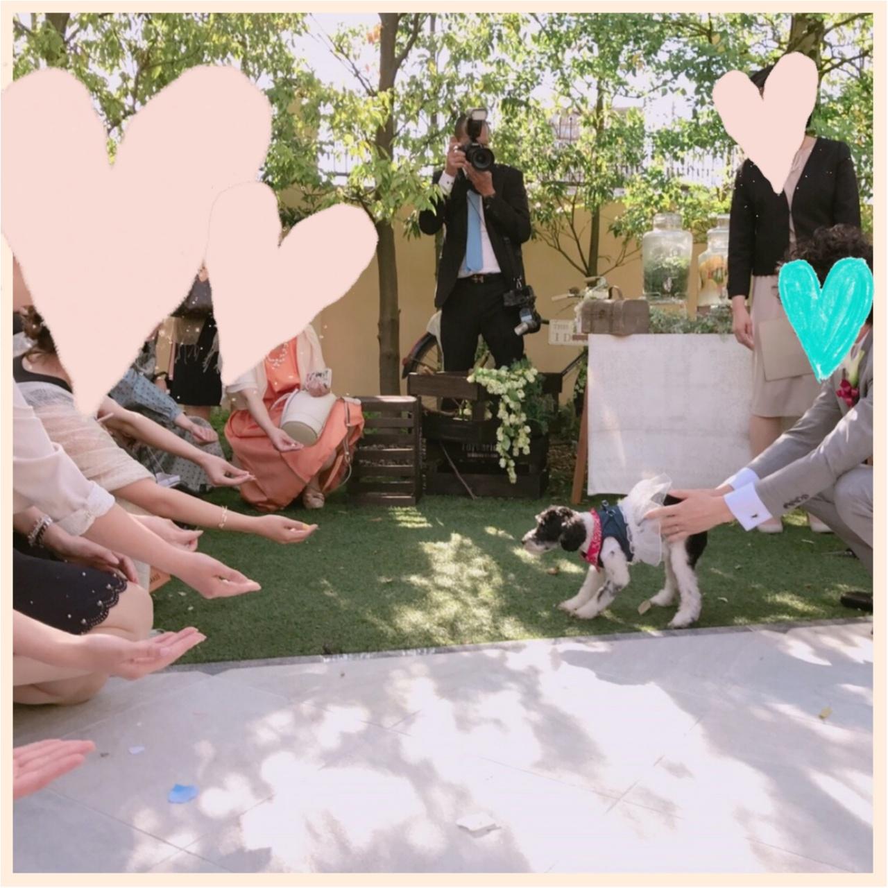 【ゆい婚】好きなものを詰め込んだ結婚式!ケーキはもちろん、、♡_1