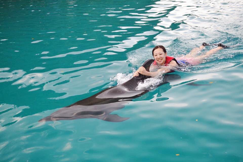 【travel】パラオでイルカに乗ろう~死ぬまでにやりたいことの1つ~_8