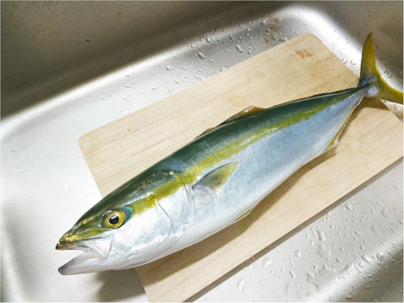 """【おでかけ】自分で釣ったら、美味しさも倍増♪ 大海原に囲まれて、""""海釣り"""" に挑戦してきました!_4"""