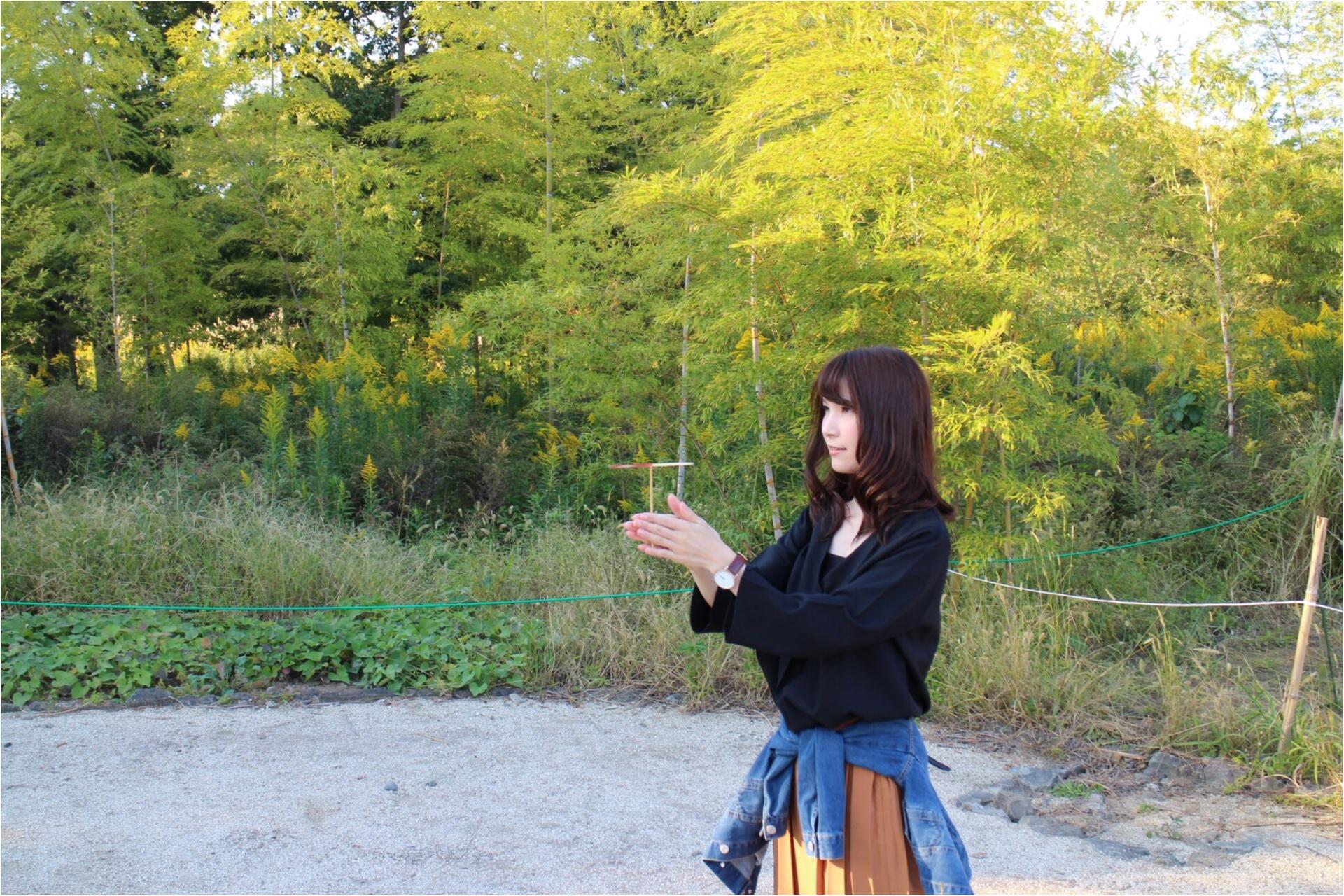 ♡ドライブにオススメ!都内から2時間弱で秋を感じられる!ひたち海浜公園にコキアを見に行こう♡_5