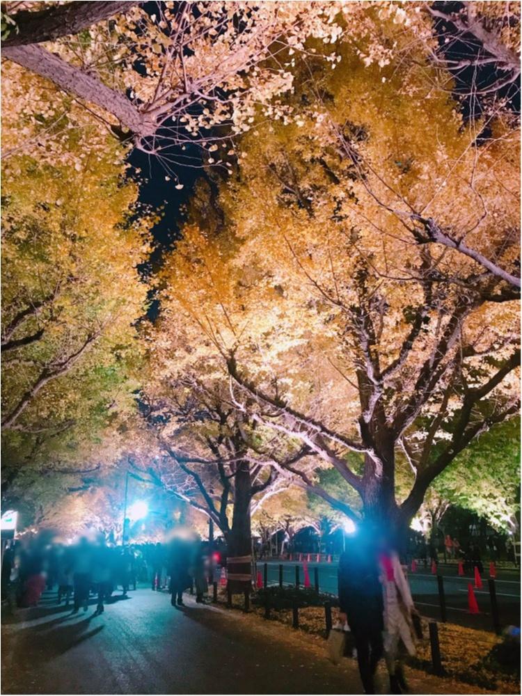 イチョウ並木は今だけ❤︎あのドラマでも使われた都内の紅葉の名所へ行ってきました!_1
