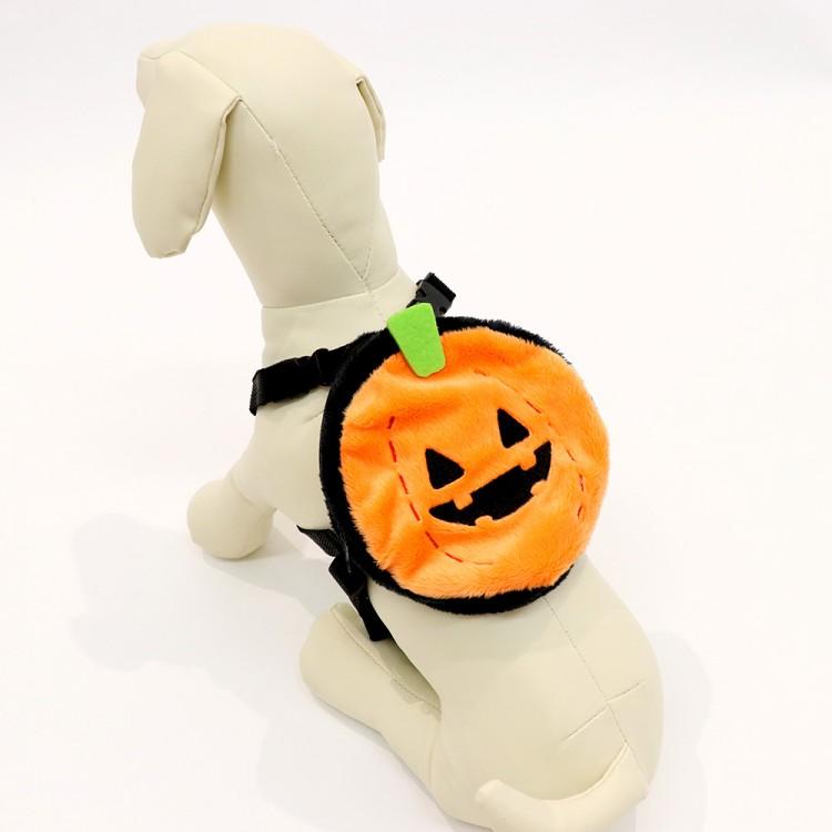 愛する犬・猫と楽しむハロウィン♡ 『3COINS』で買えるおすすめペットコスプレ8選_8