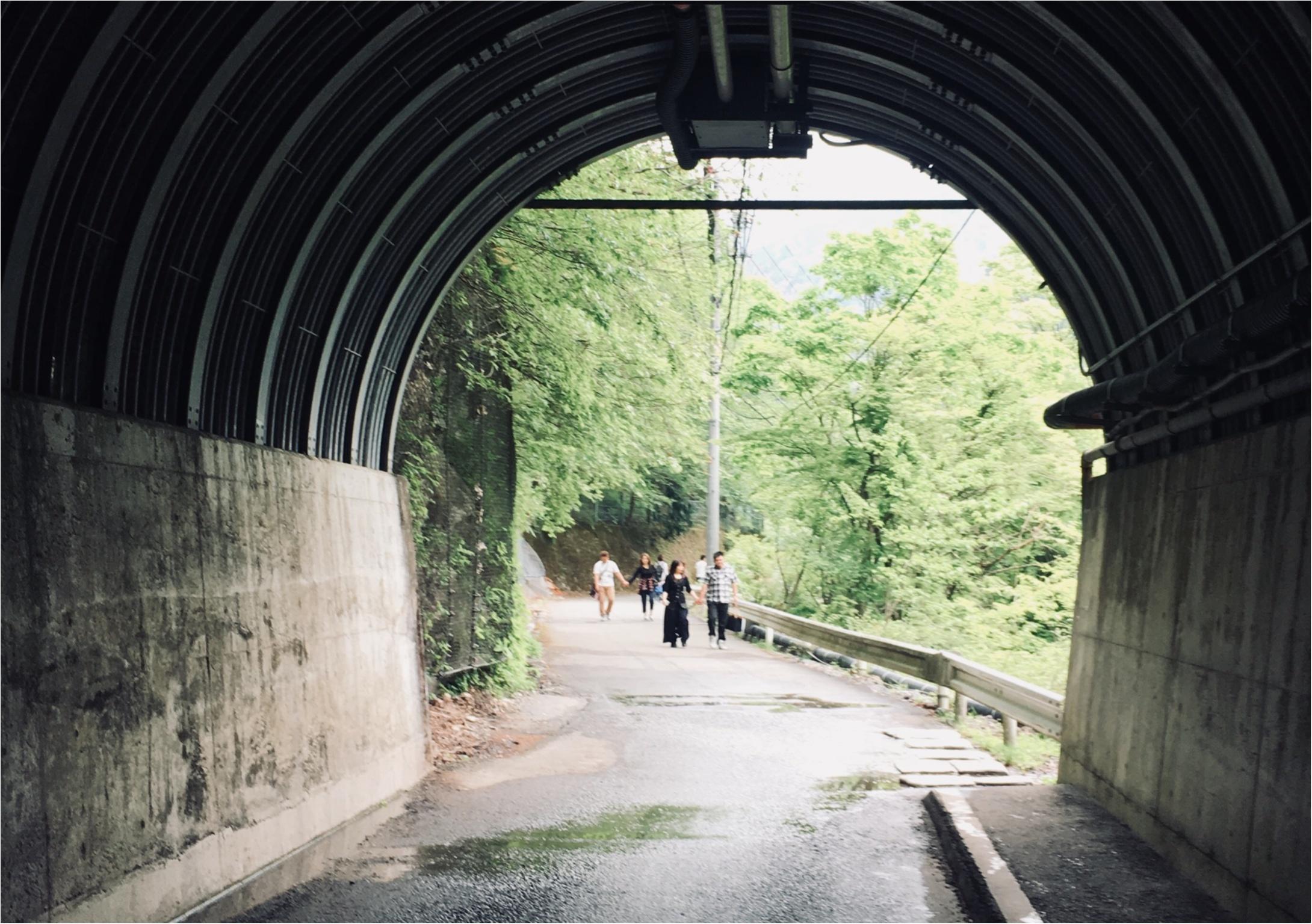 【静岡】涼しさを感じに《夢の吊り橋》へGooooo!_2