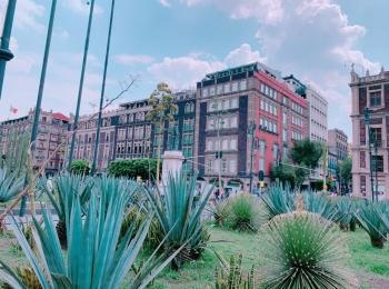 【メキシコ】6時間乗り継ぎで市内へ