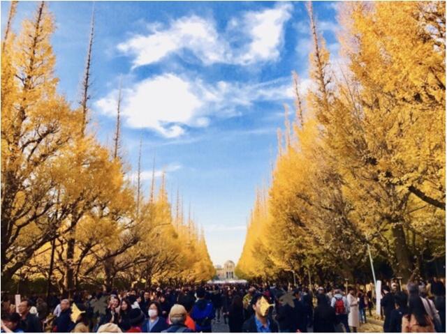【紅葉スポット】美しすぎる黄色のトンネル《神宮外苑イチョウ並木》今が見頃です♡_2