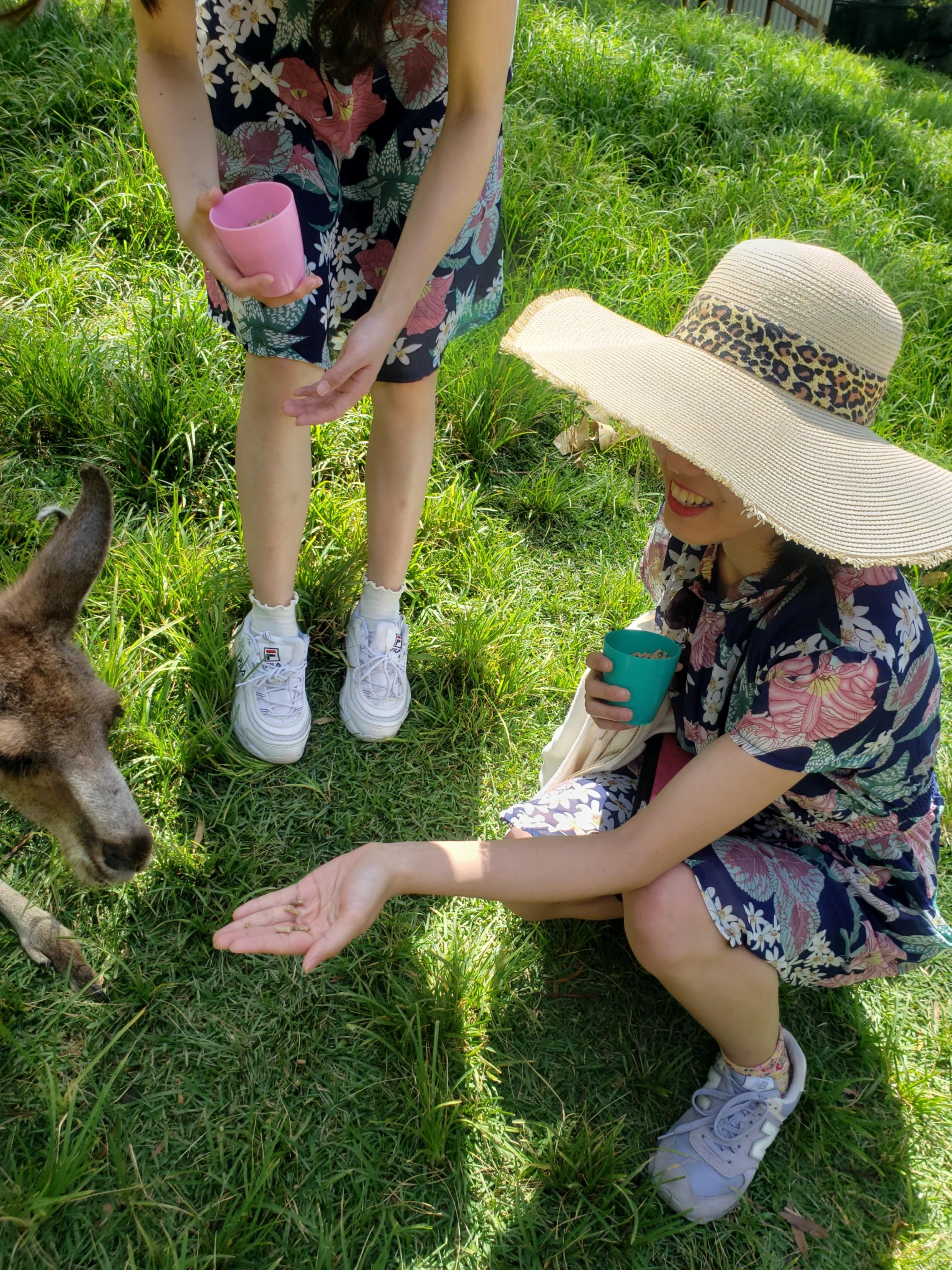 【オーストラリア旅行#1】ゴールドコーストでのアクティビティ♡_8