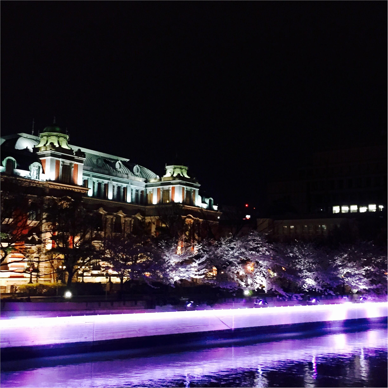 【夜桜見物】大川沿いの桜が満開!川沿いをゆったりお散歩するのがオススメ◎_1