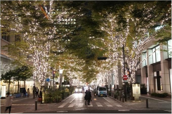 東京都内のおすすめイルミネーション、表参道、恵比寿、お台場etc.11選☆彡_17