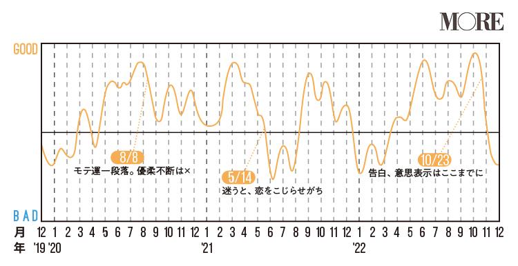 双子座(ふたご座)2020年の運勢♡ 人気占術研究家・水晶玉子の12星座別「寿占い」_7