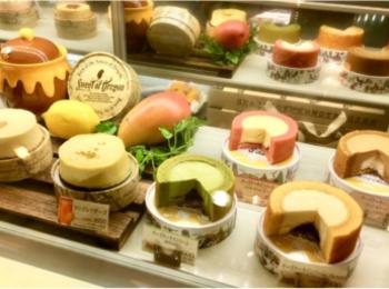 チーズケーキ好きのあなたに。名古屋CAFE《スイート オブ オレゴン》