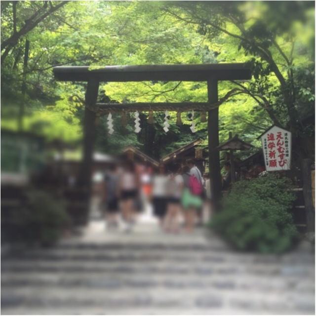 【京都】可愛い絵馬に願いを込めて♡パワースポット野宮神社へ!_2