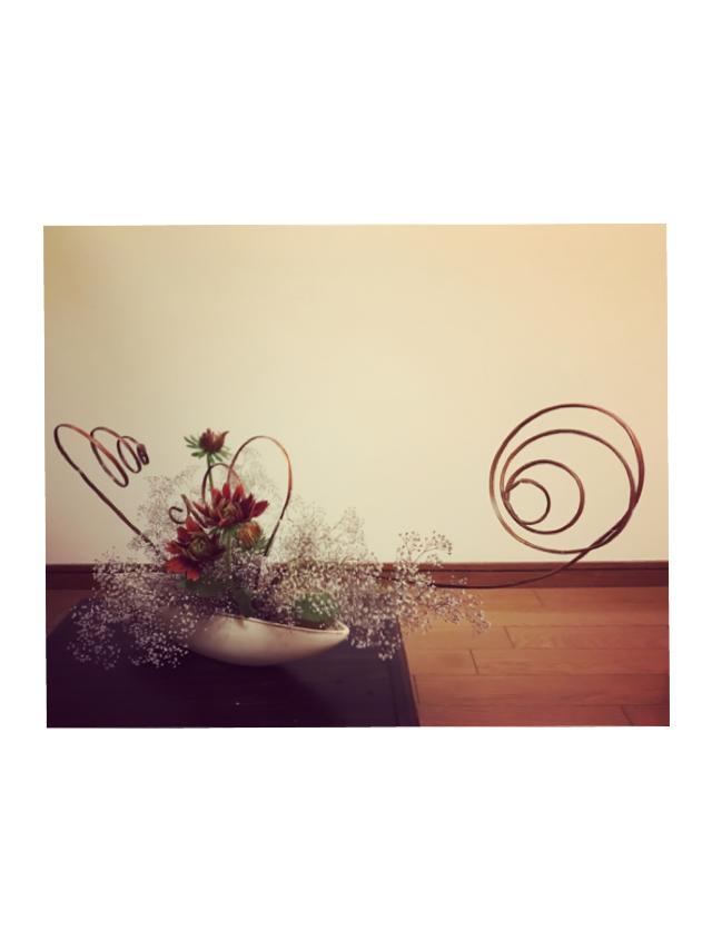 かすみ草【清らかな心】【幸福】_1