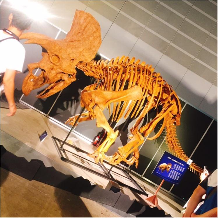 【9/3まで】大人も子供も楽しめる!!大迫力《横浜恐竜展2017》で動く恐竜の森を体験♪_7