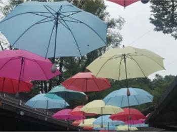 【軽井沢】梅雨が楽しく!カラフルなイベント開催中♡