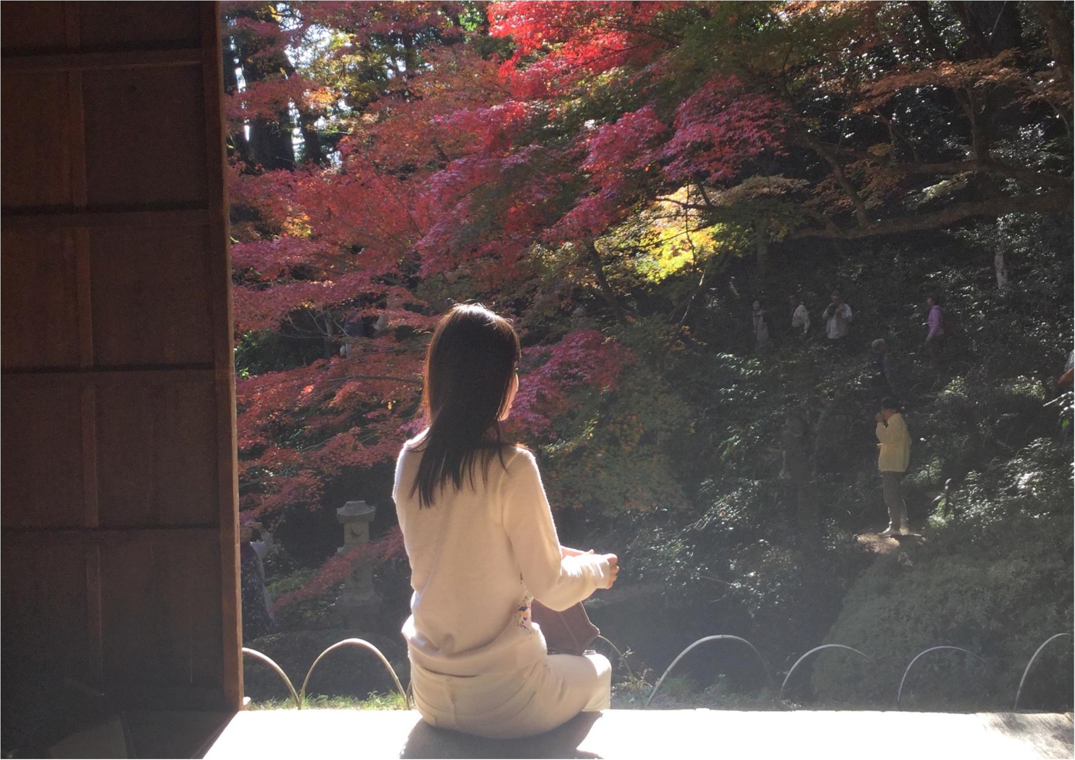 【#紅葉デート】春と秋に2週の週末しか一般公開されない!広島県を代表する紅葉スポット『吉水園』♡_2