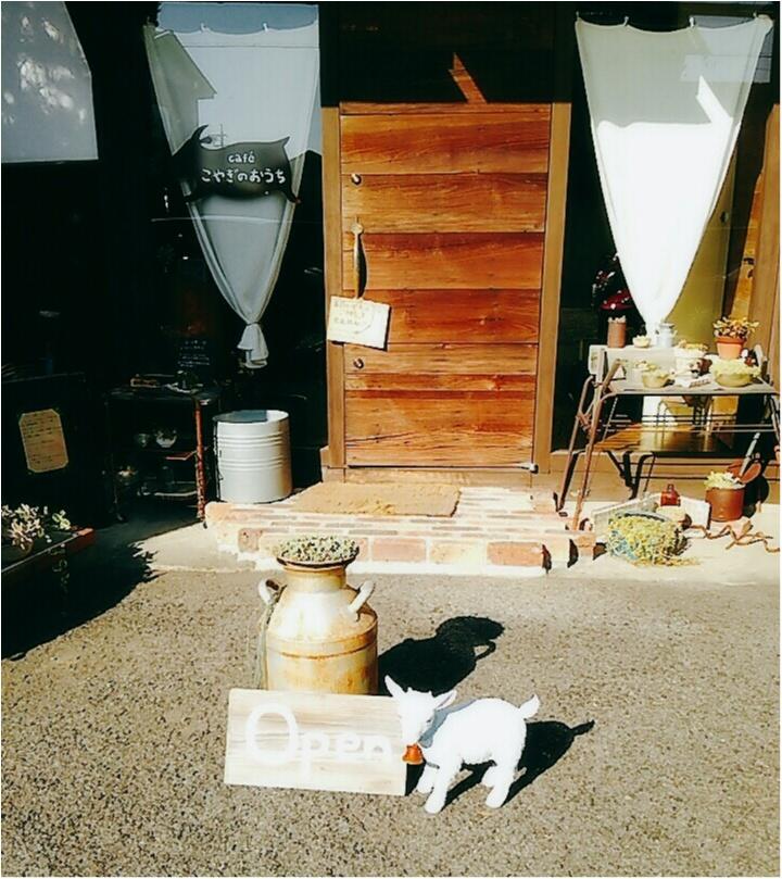 岐阜女子旅特集《2019年版》- 「モネの池」や「モザイクタイルミュージアム」などおすすめのスポット&グルメまとめ_41