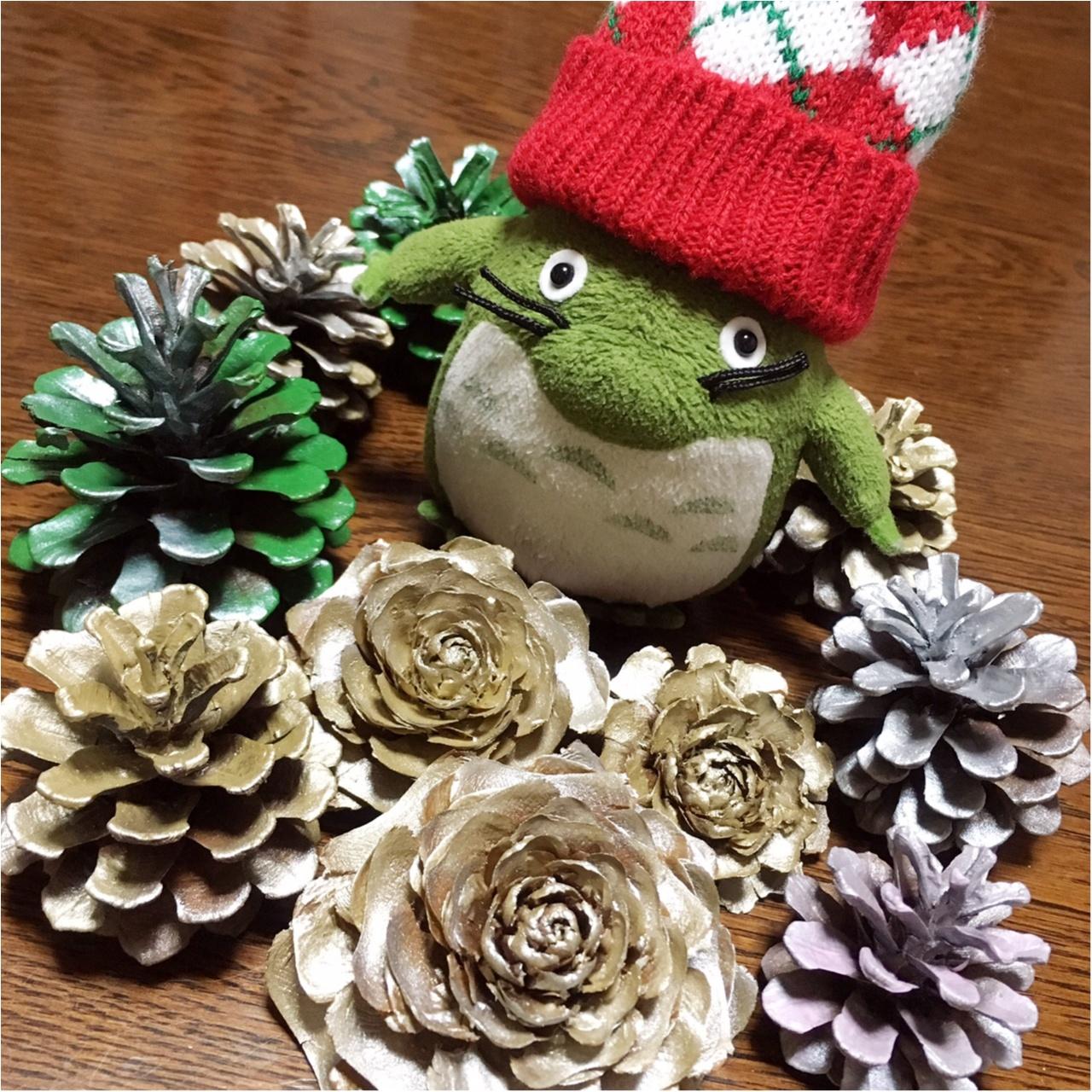 クリスマスにぴったり♡薔薇の形をした天然の松ぼっくり『シダーローズ』をあなたはご存知ですか?_3