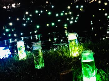 【ビーズハーバリウム】幻想的な夏のイルミネーション★光るハーバリウムが圧巻の美しさ♡