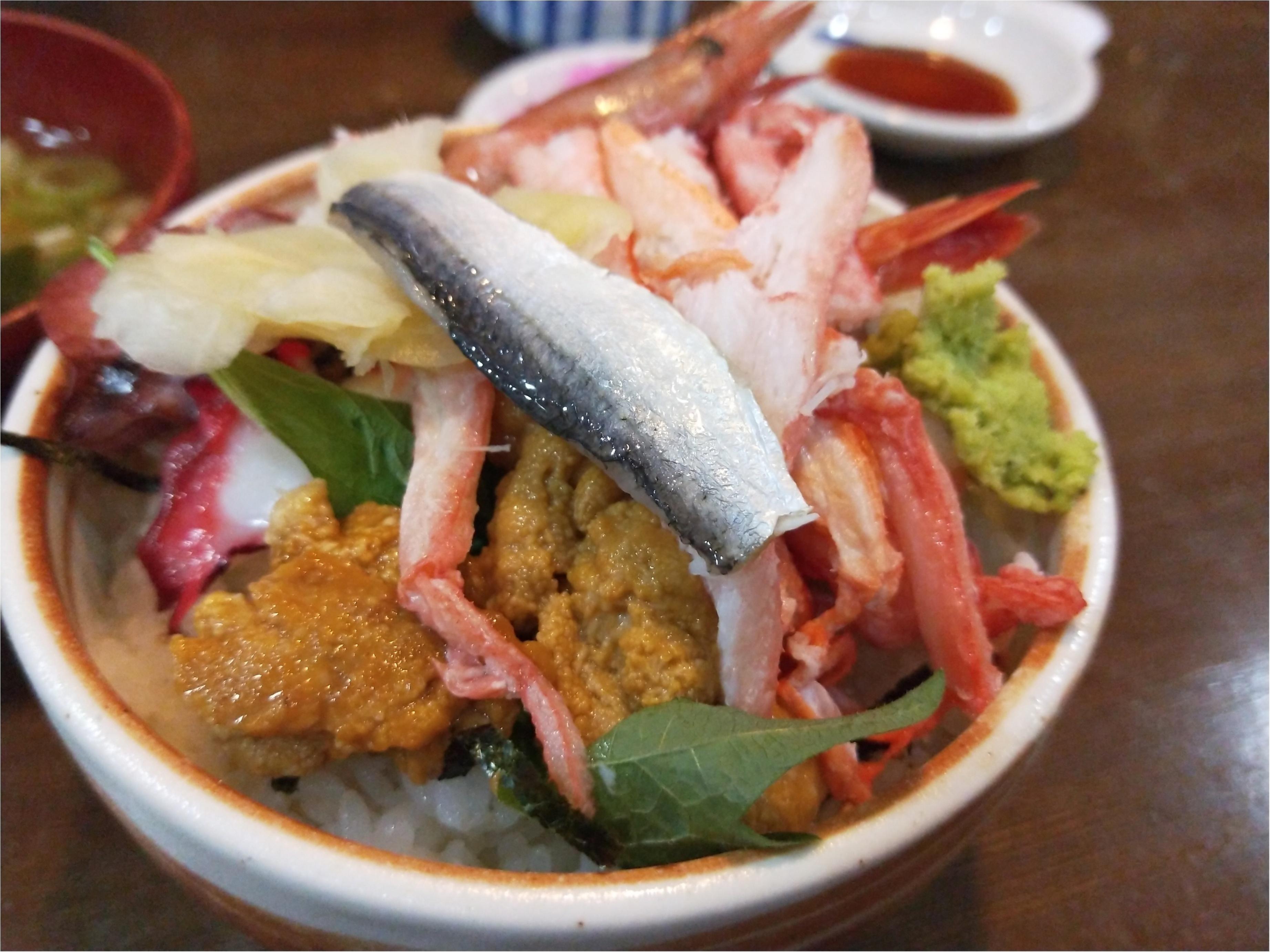 丘一面に広がる青い絨毯「ネモフィラ」観賞と新鮮な海鮮丼を食すバスツアー✨_3_3